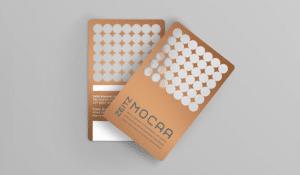 Zeitz MOCAA Bronze Membership