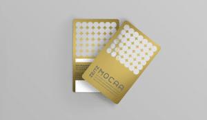 Zeitz MOCAA Membership