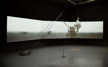 Still-life with three suspended bodies